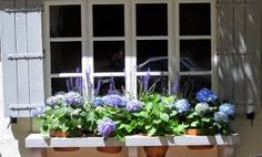 Image result for country living window boxes