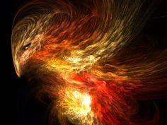 daniela: Pasărea Phoenix