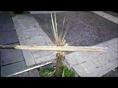 Qualiano, Piazzetta Santa Maria delle Grazie consegnata di nuovo al degrado: spezzato un albero