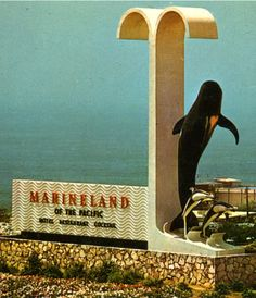 Entrance to the now defunct Marineland of the Pacific.San Pedro,Ca. Worked here a few days in burger shack. Vintage California, California Dreamin', California Attractions, My Childhood Memories, Great Memories, Torrance California, Costa, Las Vegas, Googie
