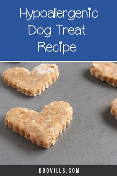 Looking for an easy hypoallergenic dog treat recipe that Spot will gobble up? Try our almond oatmeal cookies! Plus learn more about allergies in dogs! Homemade Biscuits, Homemade Dog Treats, Pet Treats, Dog Treat Recipes, Dog Food Recipes, Wellness Tips, Health And Wellness, Annorexia Tips, Hypoallergenic Dog Treats