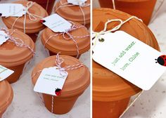 flower pot bridal shower favors