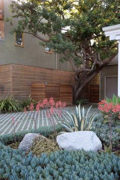turfblock planted w/ Elfin Thyme groundcover - Gabriela Yariv
