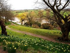 girlyme:  thingssheloves:  The Boat House on the River Wye (via saxonfenken)
