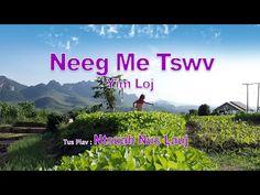 Neeg Me Tswv Yim Loj. 2/16/2016