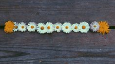 Flower power 🌼🌻🌺