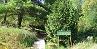 Lanaudière Outdoor Furniture Sets, Outdoor Decor, Plein Air, Plants, Tourism, Plant, Planting, Planets, Outdoor Furniture