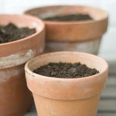 Potting Soil Recipes