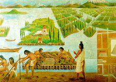 chinampas-tradicionales, gran invento de cultivo de nuestros antepasados