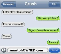 How To Play 20 Questions Over Text