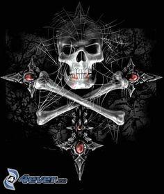 crâne, os