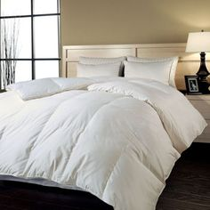 Blue Ridge Hungarian White Goose 700TC Down Comforter. I need to buy this, I had to throw out my very old one and since then every winter I FREEZE. -rcc