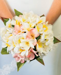 Photo about A beautiful frangipani flower wedding bouquet in front of a white wedding dress. Image of artistic, pink, bouquet - 10314361 Flores Plumeria, Plumeria Bouquet, Frangipani Wedding, Plumeria Flowers, Beach Wedding Flowers, Wedding Flower Arrangements, Flower Bouquet Wedding, Floral Wedding, Tropical Wedding Bouquets