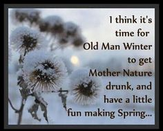Time For Spring funny quotes quote winter jokes lol funny quote funny quotes funny sayings humor winter quotes winter humor quotes that make you laugh quotes that make you smile Winter Funny, Winter Jokes, Mother Nature Quotes, Mother Quotes, Lol, Snow Quotes, Fun Quotes, Humor Quotes, Funny