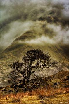 ~~Misty Isle | Strath Mor, Skye: early morning hill fog pours over the lower slopes of Belig, Torrin, Scotland, UK | by Shuggie~~
