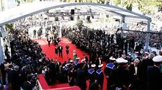 Image result for cannes film festival