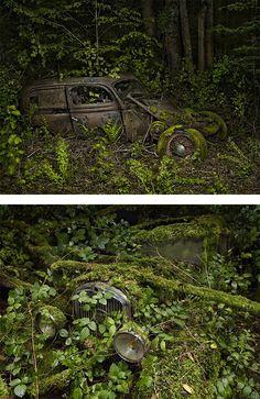 "Leave your car parked somewhere long enough...BAM! It's modern art masterpiece! ""Paradise Parking"" by Peter Lippmann"