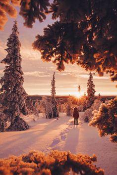 Levi, Finland by Daniel Taipale