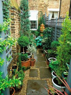 Narrow Garden Space of Townhouse This very narrow space on the side of a townhouse is made more interesting by using an interesting paving pattern with tiles and pea gravel, plus a variety of plants in pots.