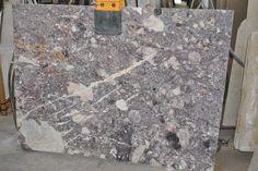 Skyros Sea Shells Slab