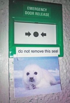 And please, do NOT break the seal!