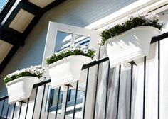 Lucky enough to have your very own balcony? Make it look EVEN prettier with the addition of our balcony rail trough.