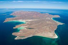 ISLA BENDITA La Isla Espíritu Santo, tiene 19 kilómetros de largo y cinco kilómetros de ancho. Cuenta con docenas de hermosas bahías, una rica vida marina, reptiles terrestres, aves y anfibios. Este desierto de mas de nueve mil hectareas es uno de los ecosistemas mejor conservados de Baja California.