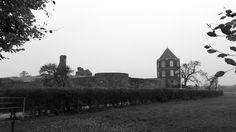 Ruin of Castle Montfort Limburg