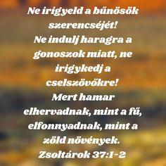 Blessings, Prayers, Religion, Blessed, Bible, Christian, Attila, Faith, Biblia