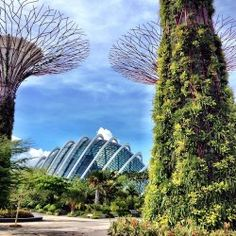 purple roofs gay travel newsletter 52414 singapores garden by the bay - Garden By The Bay Bar