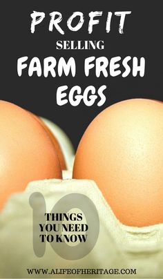 Farm Fresh Eggs. Your farm fresh eggs can be the center of attention when you utilize these 10 ideas to help you get a corner of the egg selling market.