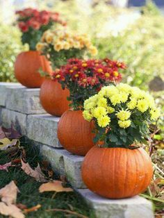 "Pumpkin ""pots"" with mums"
