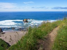 Exploring the best of the Oregon coast on 7 easy hikes  On the trail to Indian Beach. Photo by Robert Reid / Lonely Planet.