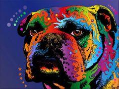 Colorful Fierce