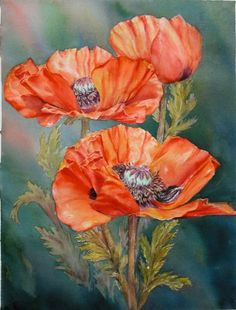 Red Poppies by marianne Broome Watercolor Poppies, Red Poppies, Watercolor Paintings, Original Paintings, Art Floral, China Painting, Flower Art, Beautiful Flowers, Art Projects
