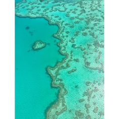 I was treated to this very surreal moment flying over the 'heart reef' on the Great Barrier Reef today. The photo does not do it enough justice. A wonderful adventure on our last day. A must see! #GreatBarrierReef #HeartReef #WhitsundayIslands #Whitsundays #Queensland #QLD #Australia #Reef #WondersoftheWorld #SevenNaturalWondersoftheWorld #NaturalWondersoftheWorld #Photooftheday #iPhone #nofilter by naomi_moran http://ift.tt/1UokkV2