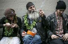 Are the feds right to let states legalize marijuana? | Medical Marijuana Canada Info