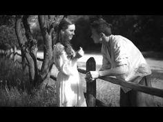 Чарівна Скрипка. Сіла птаха - YouTube