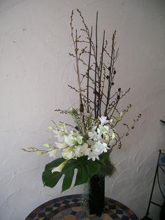 arums, oncidium