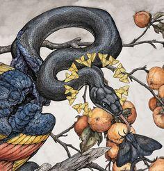 """Lauren's Artwork — """"Sweet Damnation"""" is now available as a limited. Art And Illustration, Botanical Illustration, Animal Drawings, Art Drawings, Watercolor Flower, Snake Art, Desenho Tattoo, Dark Art, Art Inspo"""
