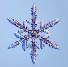 Snowflakes under microscope - Imgur