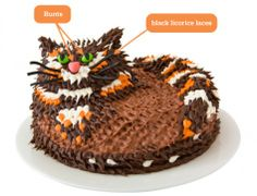 DIY Cat Cake: Make a cat birthday cake with licorice laces. Easy, step-by-step recipe, diagrams and pictures.