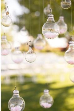 lightbulbs repurposed to hold flowers