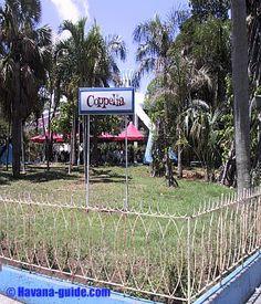 Coppelia Havana Cuba Attractions