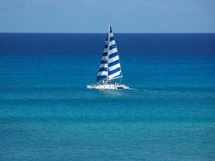 Sailing the clear blue. #hawaii