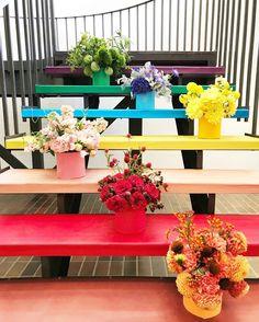 Photos from San Francisco& Color Factory Pop Up Museum Diy Inspiration, Mother Nature, Pop Up, Floral Arrangements, Good Things, Flowers, Plants, Instagram, San Francisco