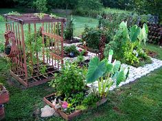 gorgeous square foot garden!