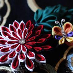 大輪の剣菊と二重蝶、葉