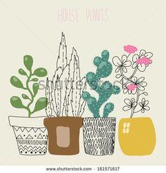 House plants. Vector illustration. - stock vector