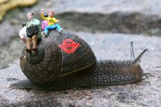 """""""Inner City Snail"""" is an art project by guerrilla artist Slinkachu, found in or around London. By decorating the shells of snails found around the city and then allowing them to continue with their normal sluggishly slimy snail business, he hopes to provide a satire of not only street art but the compulsive human tendency of covering every available surface with signage or advertising."""